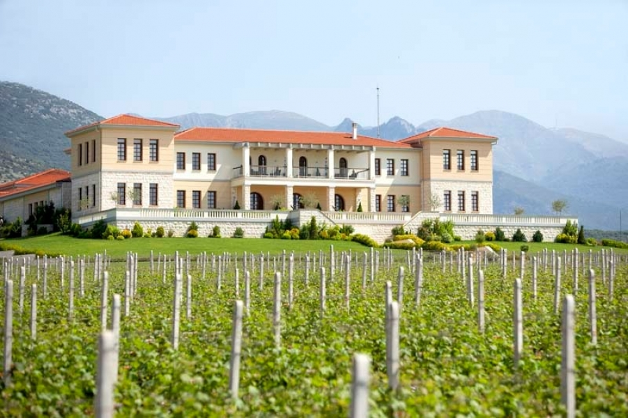Wine tour Bulgaria and Greece, a charmingly flavourful combination